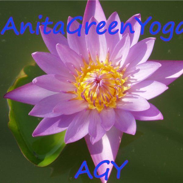AnitaGreenYoga-3.jpg