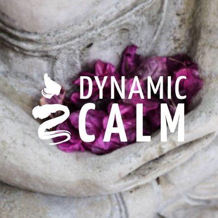 dynamiccalm-share1.max-800x600