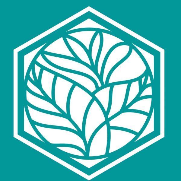 hexagon-logo-2