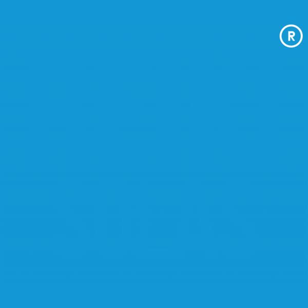 logo_transparent_backgroundWITH_TRADEMARK-1