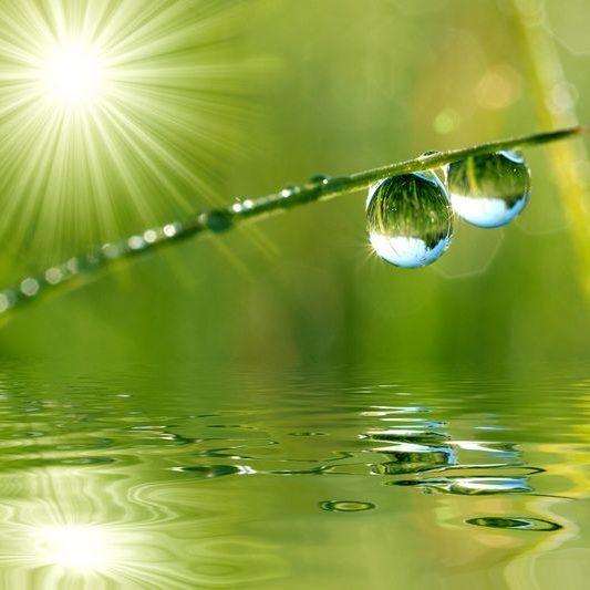 water_drops_green_2